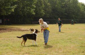 Dog Parks near your Charlottesville Apartment