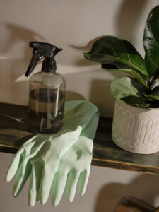 Clean and Refresh Your Charlottesville Apartment