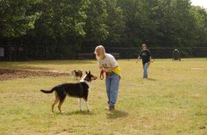 Apartment Community Dog Park Etiquette